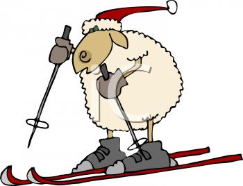 sheep_002_tnb